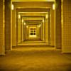 Gold__corridor