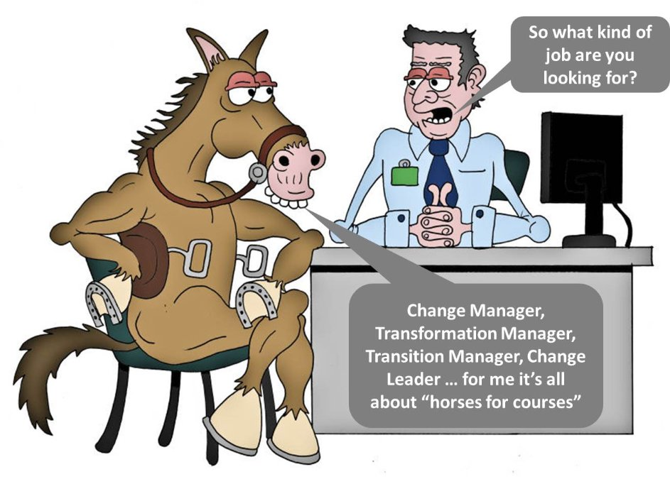 horse for courses - change management