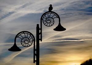 Ammonite_lamp_post_at_dusk,_Lyme_Regis
