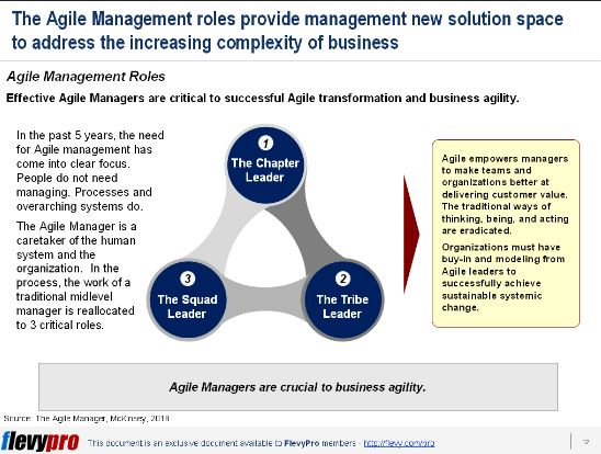 agile manager2