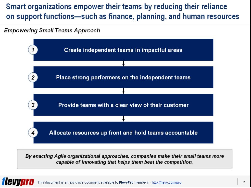 Empowering Small Teams Flevy